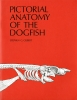 9780295951485 : pictorial-anatomy-of-the-dogfish-gilbert