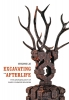 9780295994499 : excavating-the-afterlife-lai