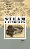 9780801872464 : steam-laundries-mohun