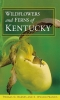 9780813123196 : wildflowers-and-ferns-of-kentucky-barnes-francis