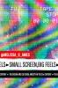 9780813180090 : small-screen-big-feels-ames