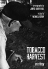 9780813195230 : tobacco-harvest-hall-berry