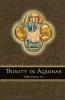 9780970610621 : trinity-in-aquinas-emery