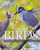 9781421427331 : birds-of-maryland-delaware-and-the-district-of-columbia-beehler-evans-robbins