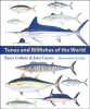 9781421431574 : tunas-and-billfishes-of-the-world-collette-graves-kells