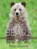 9781421439419 : bears-of-the-north-lynch