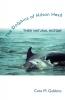 9781570034589 : the-dolphins-of-hilton-head-gubbins