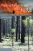9781611172423 : painting-the-landscape-with-fire-latham
