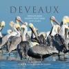 9781611174496 : deveaux-beach