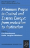 9781858660424 : minimum-wages-in-central-and-eastern-europe-standing-vaughan-whitehead